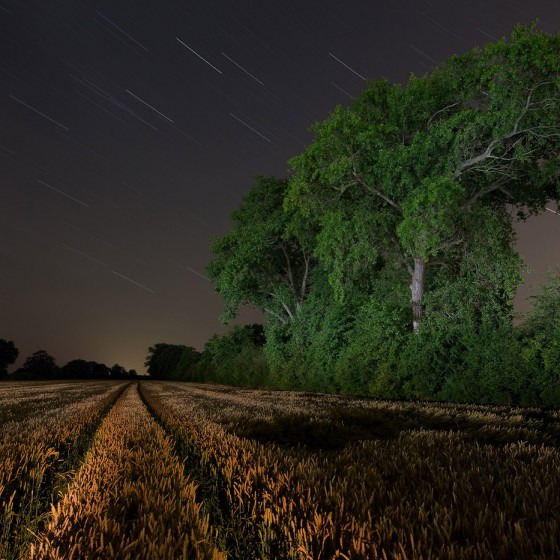 landscape-light-night-photography-green-trees-walther-pro-xl-3000r-cornfield-weyhe-germany
